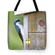 Tree Swallow At Nesting Box Tote Bag