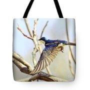 Tree Swallow In Flight Tote Bag