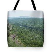 Tree Top Valley Tote Bag