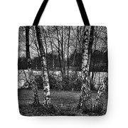 Tree Quartet And The Lake Tote Bag