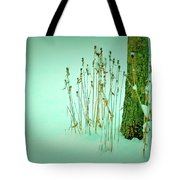Tree Trunk In Snow Tote Bag