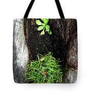 Tree Trunk Still Life Tote Bag