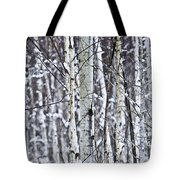 Tree Trunks Covered With Snow In Winter Tote Bag