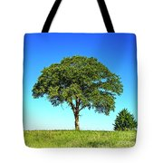 Tree Two One... Tote Bag
