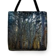 Tree Wall Tote Bag