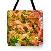 Tree With Autumn Leaves Tote Bag