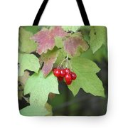 Tree With Red Berry Tote Bag