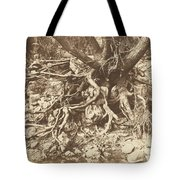Tree With Tangle Of Roots Tote Bag
