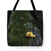 Tree With Yellow Leaf Tote Bag