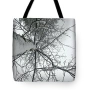 Tree Wrapped In Snow Tote Bag
