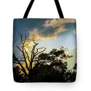 Treeline Silhouette Tote Bag
