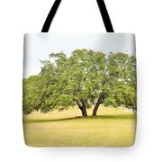 Trees 004 Tote Bag