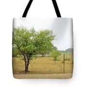 Trees 011 Tote Bag