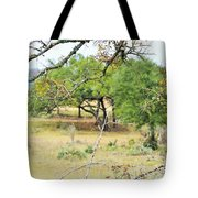 Trees 013 Tote Bag
