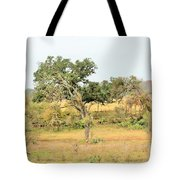 Trees 015 Tote Bag