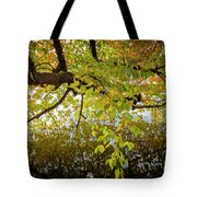 Trees 9684 Tote Bag