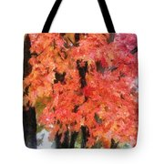 Trees Aflame Tote Bag