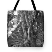 Trees And Brick Crosses Tote Bag