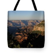 Trees And Canyon Tote Bag