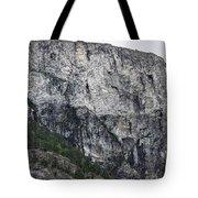 Trees And Flat Peak Tote Bag