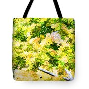 Trees And Leaves 2 Tote Bag