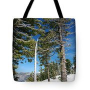 Trees And Snag At Crater Lake Tote Bag