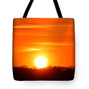 Trees And Sun Two  Tote Bag