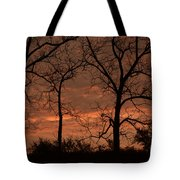 Trees And Sunrise Tote Bag