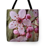 Trees Art Prints Canvas Pink Blossoms Spring Blue Sky Baslee Troutman Tote Bag