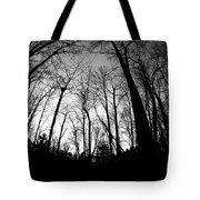 Trees At Dusk Tote Bag