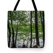 Trees At Lake Schlachtensee Tote Bag