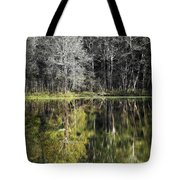 Trees At Otter Point Tote Bag
