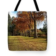 Trees At The Park Tote Bag