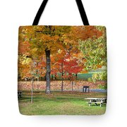 Trees Begins Autumn Color Tote Bag