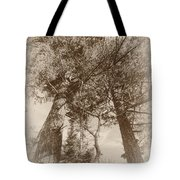 Trees Colliding Tote Bag