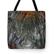 Trees Embracing Tote Bag