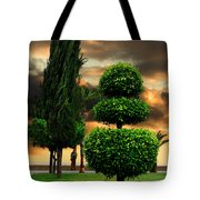 Trees In A Park Of Limassol City Sea Front In Cyprus Tote Bag