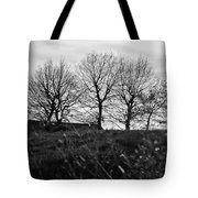 Trees In April Tote Bag