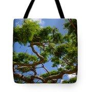 Trees In Bermuda Tote Bag