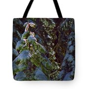 Trees In Deep Snow Making A Ghost Show Tote Bag