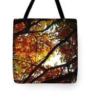 Trees In Fall Fashion Tote Bag