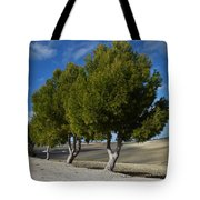 Trees In January Tote Bag
