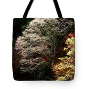 Trees In Japan 11 Tote Bag