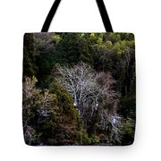 Trees In Japan 2 Tote Bag
