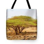 Trees In Kenya Tote Bag