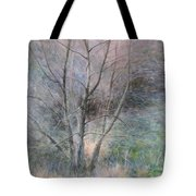 Trees In Light Tote Bag
