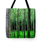 Trees In Rows Tote Bag by Julian Perry