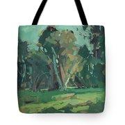 Trees In Sunlight Tote Bag