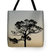 Trees In Sunset Tote Bag