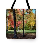 Tree's In The Forest 2 Tote Bag